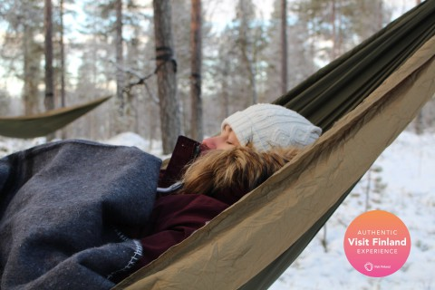 Cocooning in the HaliPuu forest – The ultimate Arctic hammock experience