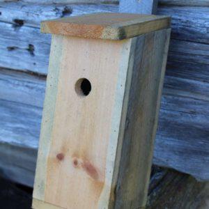 Birdhouse-0