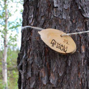 Tree #032-0