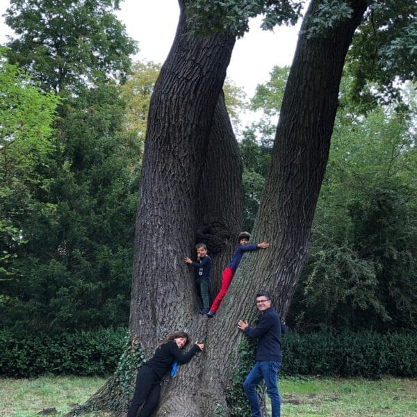 TreeHugging2020