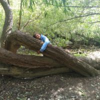 GL_#TreeHugging2020